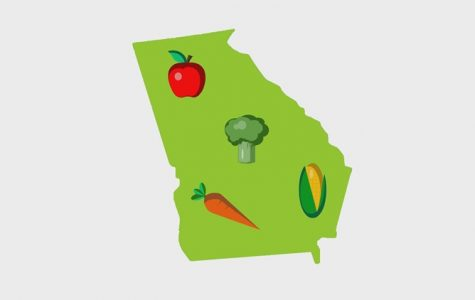 Macon Food Story, Chapter 7: What is a food desert?