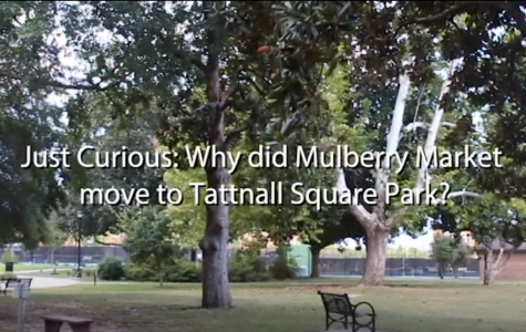 Just Curious: What is the Mulberry Market?