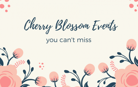 Cherry Blossom Festival Events You Can't Miss