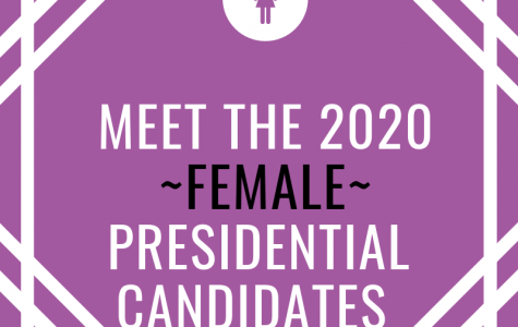 Meet the Record-Breaking Number of Women Running for President in 2020