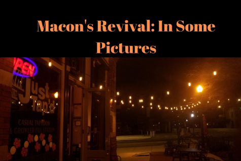 Which Macon park should you visit?