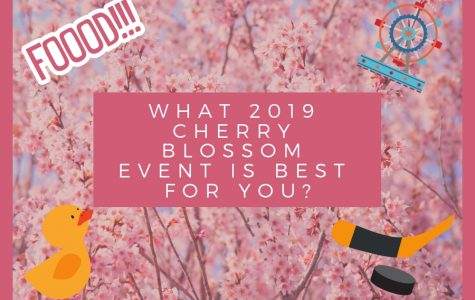 What Cherry Blossom 2019 event is for you?