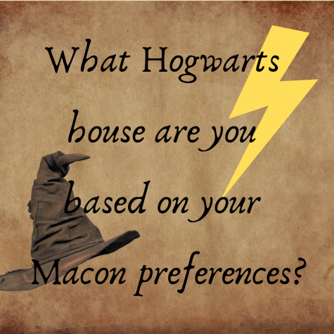 What Hogwarts house are you based on your Macon preferences?