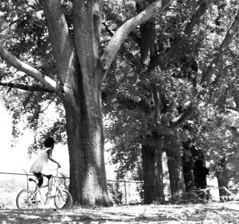 1 Girl on the Bike.jpeg