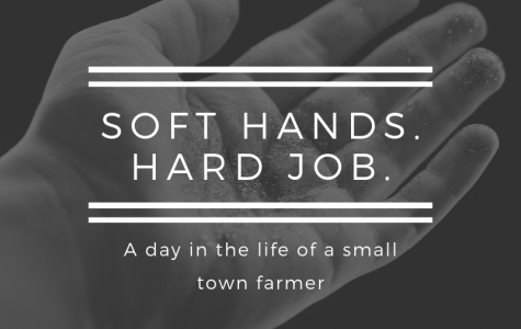 Soft Hands. Hard Job