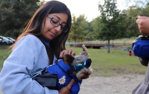 Heena Patel holds her dog Paksh at Macon-Bibb County Parks and Recreation Department's 2019 Howl-O-Ween at the Macon Dog Park on Thursday. Photo credit: Ethan Thompson