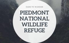 Piedmont National Wildlife Refuge: Trail Snapshot
