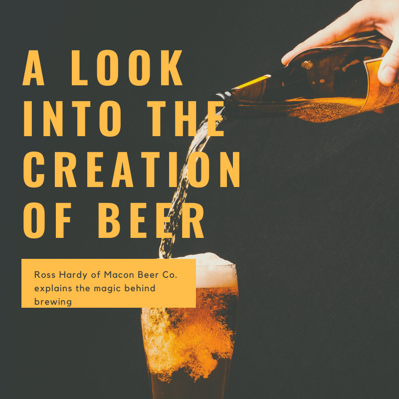 A Look Into the Creation of Beer