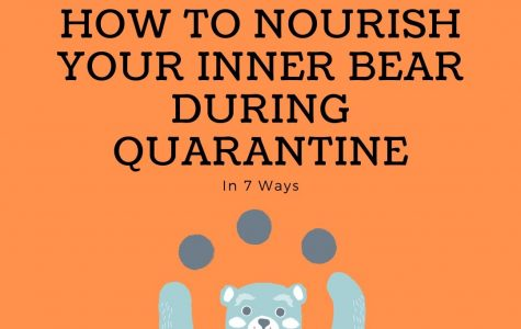 7 Ways to Nourish Your Inner Bear During Quarantine