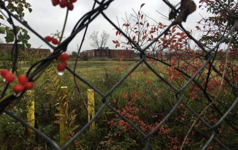 The Macon Housing Authority plans to buy a 4-acre tract on lower Walnut St. for a $15 million affordable housing complex. The proposed buildings next to Daybreak would include a respite for the homeless recovering from surgery or illness.
