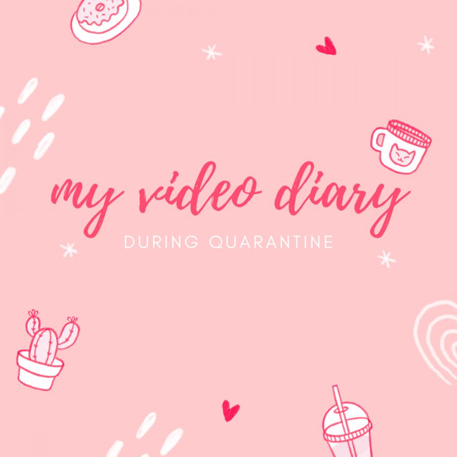 Quarantine Video Diary