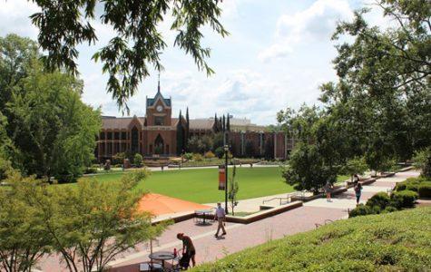 Mercer students plan to vote