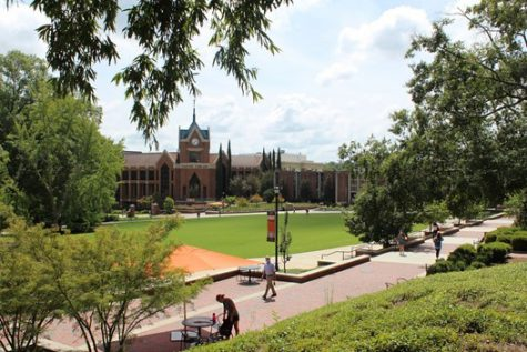 Mercer students share November voting plans