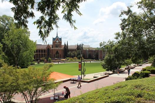 Mercer students share November voting plans
