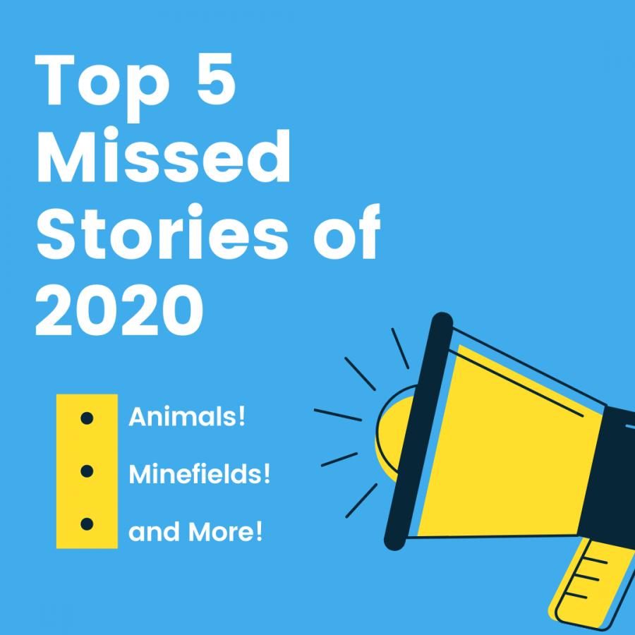Top 5 missed headlines of 2020