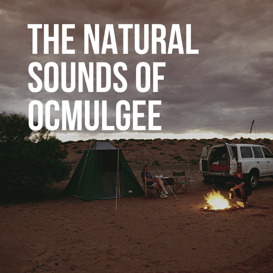 Sounds of Ocmulgee Mounds National Historic Park