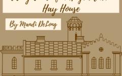 Tiny Tour: Hay House