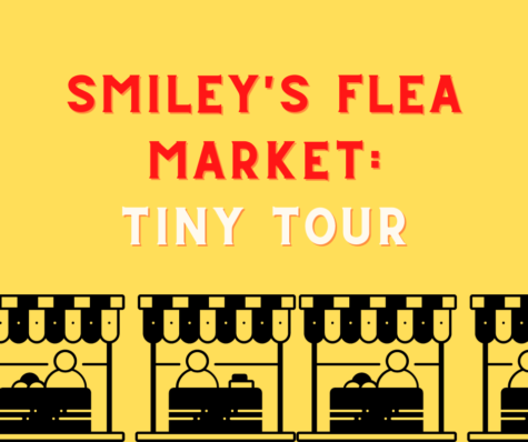 Tiny Tour: Smiley
