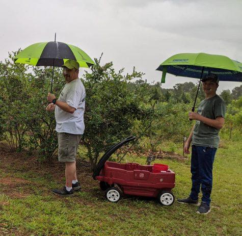 Middle Georgia farmers adapt to summer rainfall