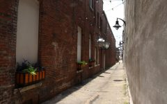 This alleyway, next to Theater Macon on Cherry Street, used to be dim and unsafe. It is now a lit area with plants and a mural and may be home to one of Wimberly Treadwells Play Paths.