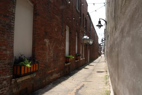This alleyway, next to Theater Macon on Cherry Street, used to be dim and unsafe. It is now a lit area with plants and a mural and may be home to one of Wimberly Treadwell
