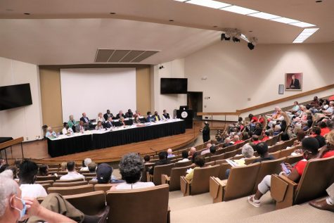 A large group of citizens voiced their opinions before the Joint Reapportionment and Redistricting Committee in Thursdays public meeting.