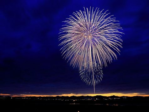 Fireworks - Fun or Frightening?